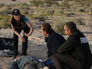 Watch CSI Season 9 Episode 24