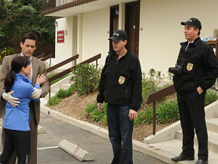 Watch NCIS Season 7 Episode 19