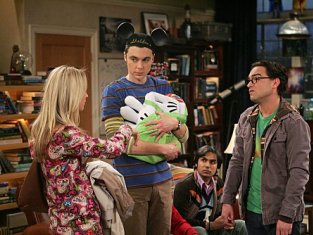 Watch The Big Bang Theory Season 3 Episode 20