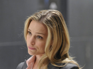 Watch Covert Affairs Season 1 Episode 1