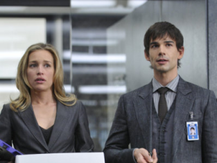 Watch Covert Affairs Season 1 Episode 2