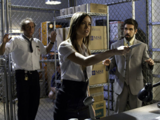 Watch Chuck Season 4 Episode 8