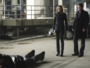 Watch Castle Season 3 Episode 13