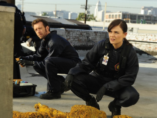 Watch Bones Season 6 Episode 13