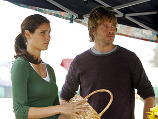 Watch NCIS: Los Angeles Season 2 Episode 21