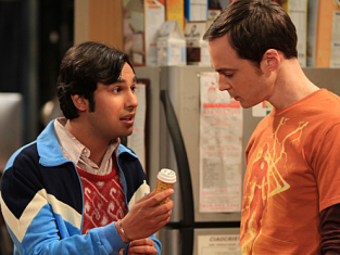 Watch The Big Bang Theory Season 4 Episode 22
