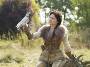 Watch Once Upon a Time Season 1 Episode 10