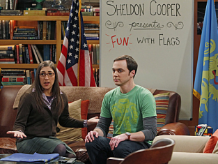 Watch The Big Bang Theory Season 5 Episode 14