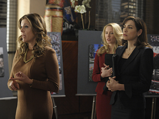 Watch The Good Wife Season 3 Episode 15