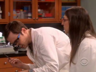 Watch The Big Bang Theory Season 5 Episode 16