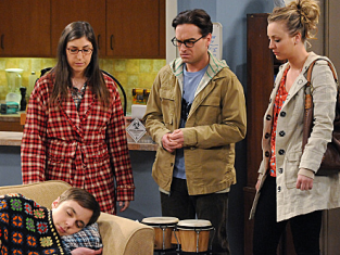 Watch The Big Bang Theory Season 5 Episode 18