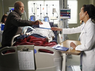 Watch Grey's Anatomy Season 8 Episode 17
