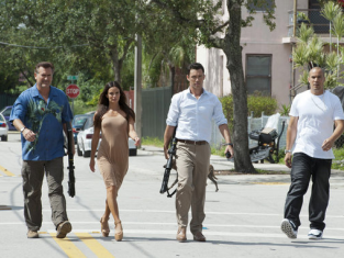 Watch Burn Notice Season 6 Episode 12