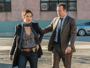 Watch Blue Bloods Season 3 Episode 13