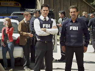 Watch Criminal Minds Season 8 Episode 15