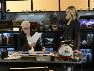 Watch CSI Season 13 Episode 19