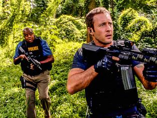 Watch Hawaii Five-0 Season 4 Episode 12