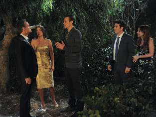Watch How I Met Your Mother Season 9 Episode 14