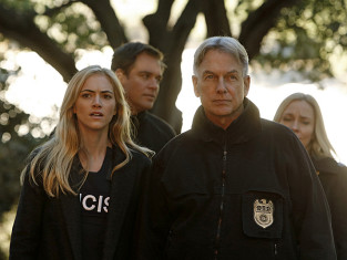 Watch NCIS Season 11 Episode 12