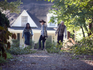 Watch The Walking Dead Season 4 Episode 9