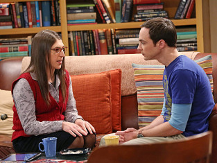 Watch The Big Bang Theory Season 7 Episode 15