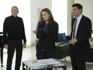 Watch Bones Season 9 Episode 15