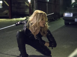 Watch Arrow Season 2 Episode 13