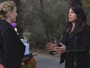 Watch Grey's Anatomy Season 10 Episode 13