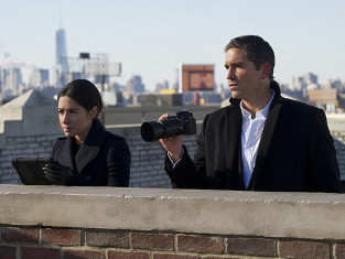 Watch Person of Interest Season 3 Episode 15