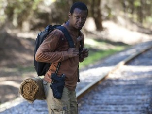 Watch The Walking Dead Season 4 Episode 13