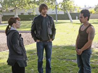 Watch NCIS: Los Angeles Season 5 Episode 20