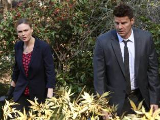 Watch Bones Season 9 Episode 20