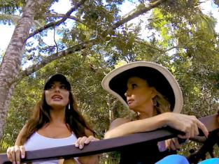 Watch The Real Housewives of Orange County Season 9 Episode 17
