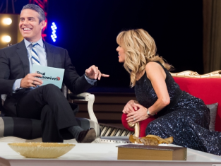 Watch The Real Housewives of New York City Season 6 Episode 23