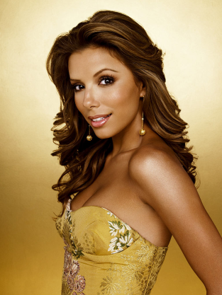 Eva Langoria as Gabrielle Solis