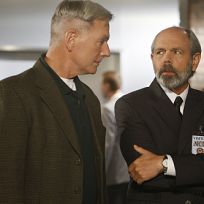 Gibbs and Fornell