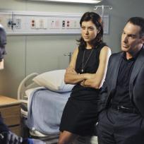 Sam, Sheldon and Addison