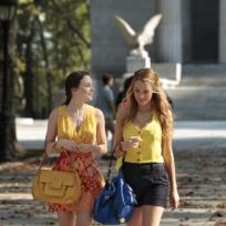 Ladies in Yellow