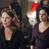 Lili Taylor on The Good Wife