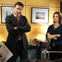 David James Elliott on CSI: NY