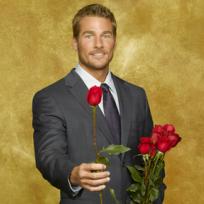 Brad-the-bachelor
