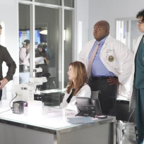 Body of proof team