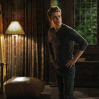 Stressed Stefan