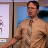 Dwight-in-charge