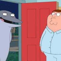 Ricky Gervais as a Dolphin