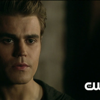 Close up of stefan