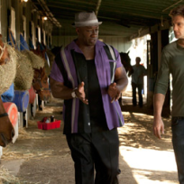 Leo and walter investigate at the stables
