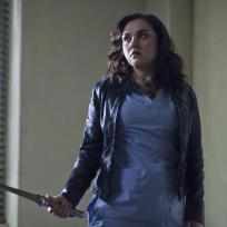 Rachel Miner as Meg