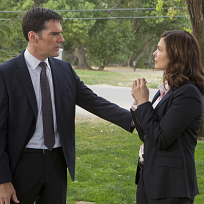 What did you think of Jeanne Tripplehorn on Criminal Minds?