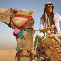 Deeks-on-a-camel